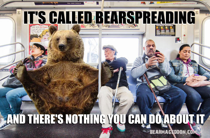 check your privilege bear