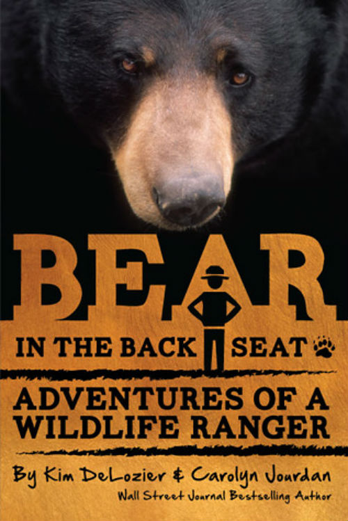 BearBook