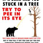Bear-up-tree-PEE