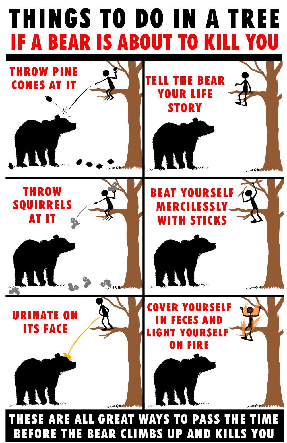 bearpeoptions